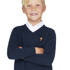 Boys Classic Navy V-neck Jumper