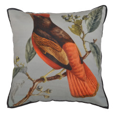 Blue bird cushion