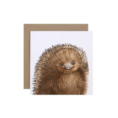 Echidna Greeting Card (pack of 5)