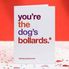 Dog's bollards funny autocorrect card