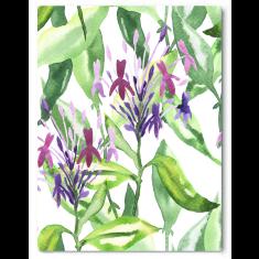 Botanical garden stroll canvas