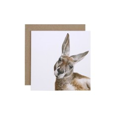 Kangaroo Greeting Card (pack of 5)