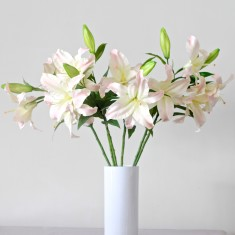 Casablanca lily bouquet (white or pink)