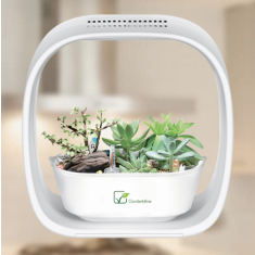 iPot Self Watering Planter