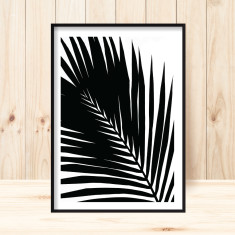 Kentia palm art print (various sizes)