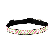 Personalised dog collar in picnic time - pink & lime print