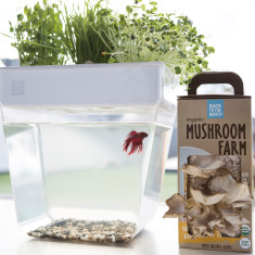 Edible Indoor Mini Farms Fish Tanker Planter Gift Set