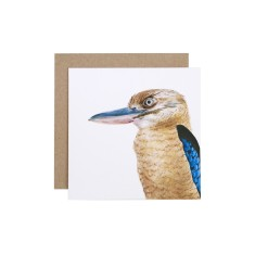 Kookaburra greeting card (pack of 5)