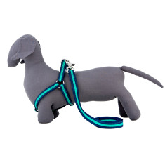 Bronte Nylon Harness In Navy & Green