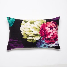 Chrysanthemum black cushion