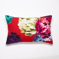 Chrysanthemum red cushion