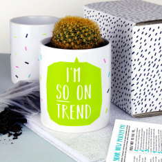 I'm So On Trend Plant Pot