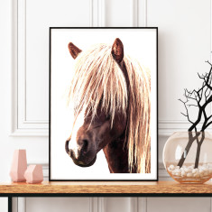 Icelandic horse art print (various sizes)