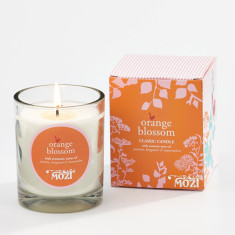 Classic candle in orange blossom