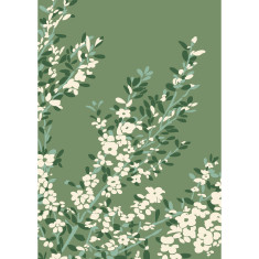 Coastal tea tree art print in green