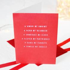 Collective nouns Christmas card packs