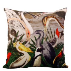 Crazy bird cushion