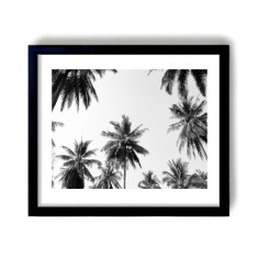 Coco Bay Photography Print