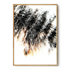 Warm and Fuzzy photographic wall art print