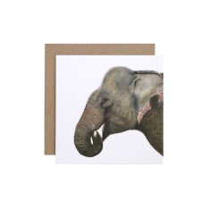 Elephant Greeting Card (pack of 5)