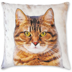 Avignon Cat 02 linen cushion cover