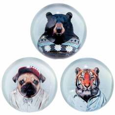 Zoo portraits paperweights (various styles)
