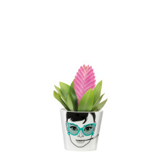 Donkey Products flower power plant pot