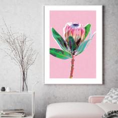 Protea pink art print
