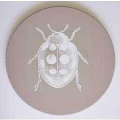 Circle ladybird canvas