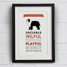 Old English Sheepdog Dog Breed Traits Print