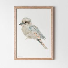 Kookaburra Watercolour Fine Art Print