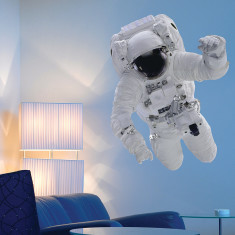 Educational astronaut wall stickers