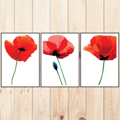 Poppy fields art prints (set of 3)