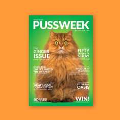 Pussweek Issue Three