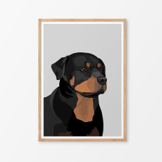 Rottweiler illustrated print