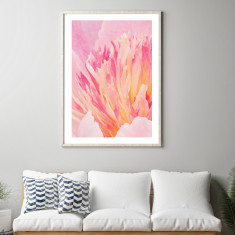 Peony close-up art print (various sizes)