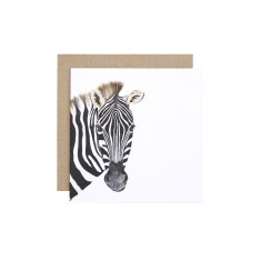 Zebra greeting card (pack of 5)