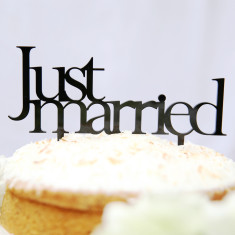 Just married wedding cake topper - Various Colours Avail