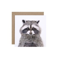 Raccoon greeting card (pack of 5)