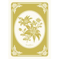 Flannel flower in chartreuse tea towel