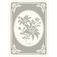 Flannel flower in silver grey tea towel
