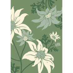 Flannel flower art print in green