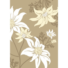 Flannel flower art print in sand