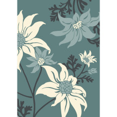 Flannel flower art print in teal