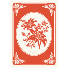 Flannel flower in tangerine tea towel