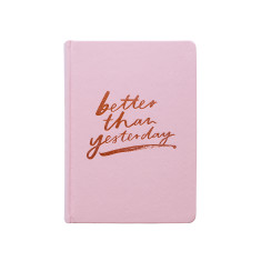 Goals 2017 Hard Cover Diary In Pink - Jasmine Dowling