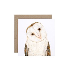 Barn Owl Greeting Card (Pack of 5)