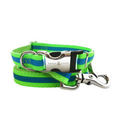 Bronte Nylon Collar & Lead Set - Bright Green / Blue