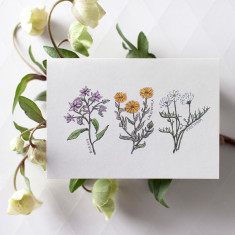 Pack of 4 Botanical Flowers Watercolour Illustration Greeting Cards
