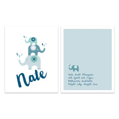Boys' elephants birth print 2 pack (various colours)